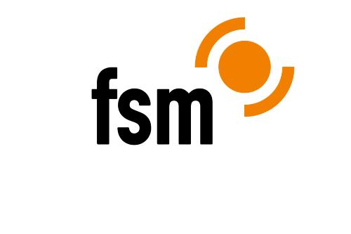 독일의 인터넷 자율규제 시스템 FSM